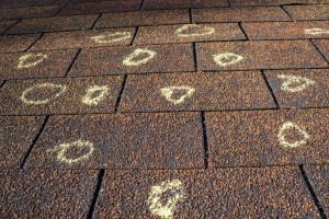 3 Reasons Why Your Roof Shingles Suffer Granule Decay
