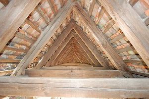 Do You Have Cedar Shingles On Your Roof?