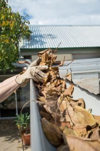 3 Inventive Ways to Keep Your Gutters Clean